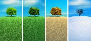 Cambiamento © Orlando Florin Rosu - Fotolia.com