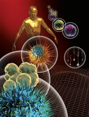 Cellule Staminali: nuovo passo avanti, restaurando telomeri.- Immagine:  © Elena Pankova - Fotolia.com