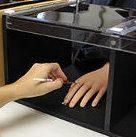 Esperimento della mano di gomma - Immagine di proprietà di: John Russell / Vanderbilt University