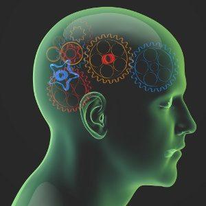 Fare acquisti usando il cervello: Neuromarketing, by Martin Lindstrom - Immagine: © vege - Fotolia.com
