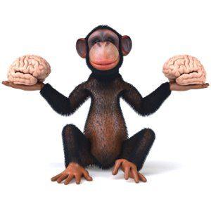 La Neuropsicologia nella Malattia a corpi di Lewy (Lewy Body Disease -LBD) – PARTE 1. - Immagine: © julien tromeur - Fotolia.com