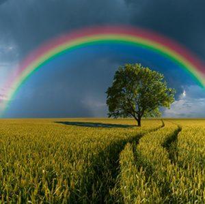 La Solitudine- Cartina Tornasole della Nostra Identità. - Immagine: © photowings - Fotolia.com