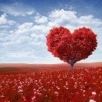 Amore e familiarità . - Immagini: © Maksim Samasiuk - Fotolia.com