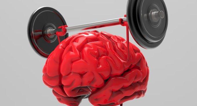 La Stimolazione Cognitiva nella Demenza: una palestra per il cervello