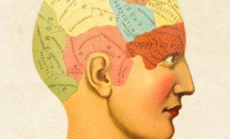 Neurobufale: miti e luoghi comuni sulle Neuroscienze nei discorsi di tutti i giorni