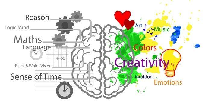neuropsicologia - Immagine: 69734038