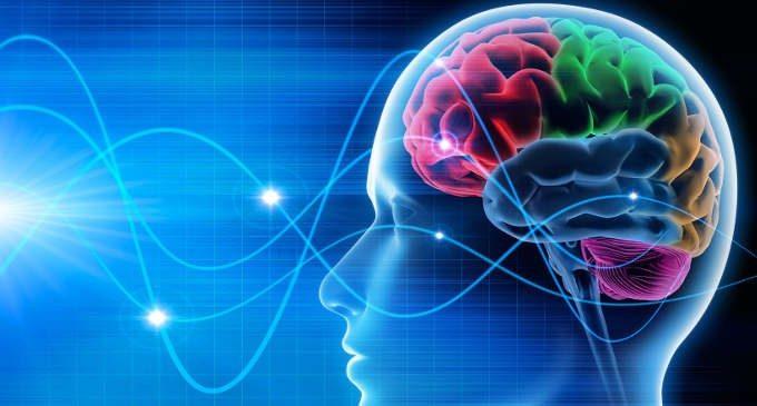Le abilità attentive di base e processamento e regolazione delle emozioni