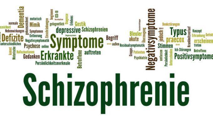 Schizofrenia e terapia cognitivo-comportamentale: introduzione all'argomento ed elementi di efficacia