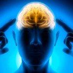 Immagine: Fotolia_60547915 il sistema cerebrale della ricerca e le dipendenze