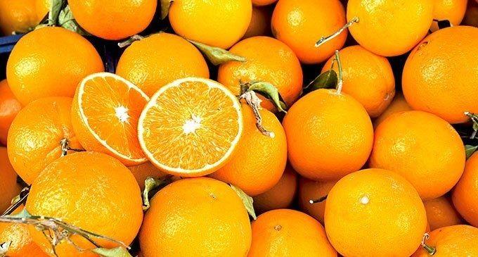 Triglie alle arance nella Sicilia dei pugili – Taste of Mind Nr.02