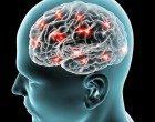 Un'analisi critica dei modelli biomedici per i disturbi psicologici