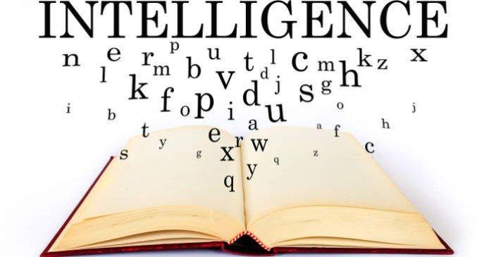 Risultati immagini per intelligenza