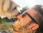 Uomo e cane: le origini dell'amicizia più lunga del mondo