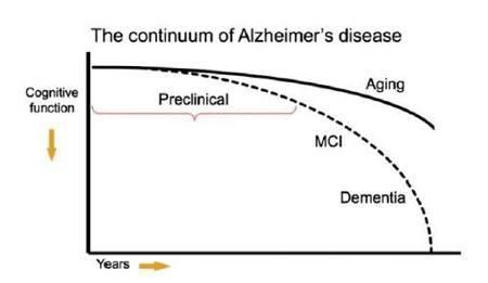 Malattia di Alzheimer il ruolo del corpo calloso nell evoluzione dei sintomi cognitivi e neuropsichiatrici _ FIG 3