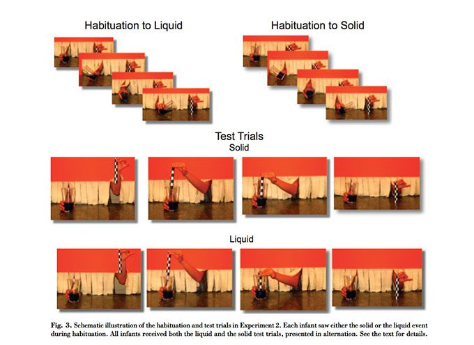 Abnituation to liquids and solids - 2