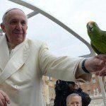 Compassione animali persone Papa Francesco