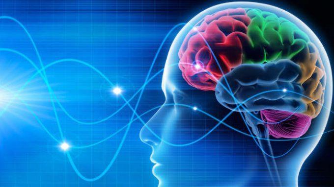 La pianificazione mentale delle attività attraverso un network di aree cerebrali