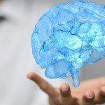 Fagocitosi nel cervello il processo di eliminazione dei neuroni