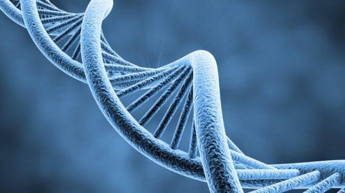 Scoperto il gene che ci fa sentire il dolore: il PRDM12