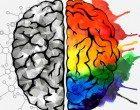 """Lo """"switch"""" cerebrale: il cervello che si salva da solo"""