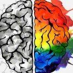 Lo switch cerebrale: il cervello che si salva da solo