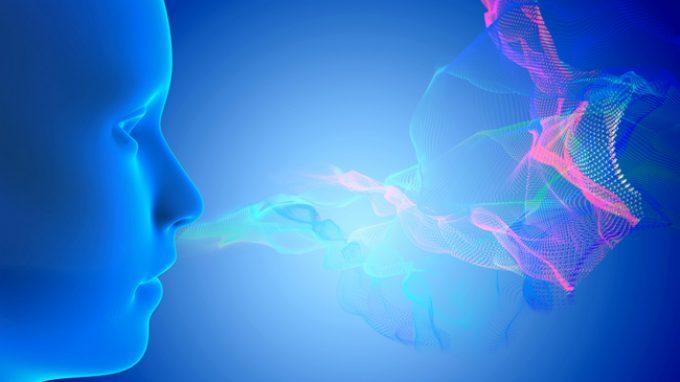 Il profumo dell'ovulazione: come l'odore influenza la scelta del partner