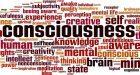 Coscienza e inconscio tra neuroscienze e cognitivismo