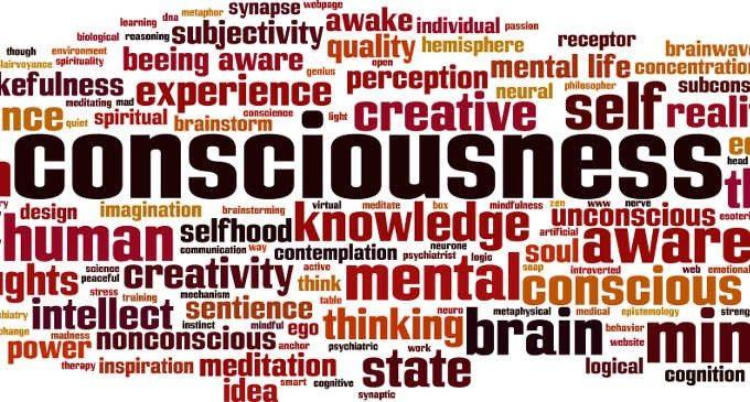 Coscienza e inconscio tra neuroscienze e cognitivismo psicologia coscienza e inconscio tra neuroscienze e cognitivismo fandeluxe Gallery