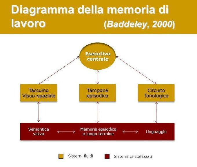 Il ruolo della memoria di lavoro nell'apprendimento di una seconda lingua - Grafico