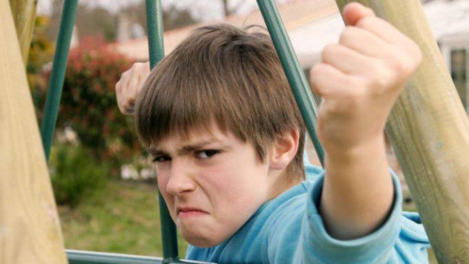 Presenza di comportamenti aggressivi e prosociali in bambini con diverso status sociale: popolarità e aggressività