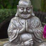 Alla ricerca della buddità il rapporto tra Psicologia Positiva e Buddismo