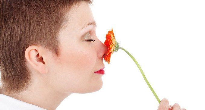Come percepiamo gli odori: questione di chimica o di cultura?