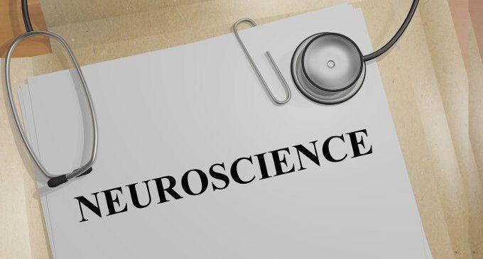 Neurolatinorum e neurodotti: chi utilizza il linguaggio delle neuroscienze per ottenere autorità scientifica