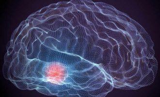Psicoterapia e brain injury: la terapia per pazienti con danni cerebrali
