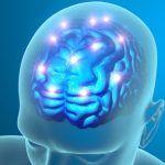 Split brain e coscienza divisa: la smentita da parte degli studi