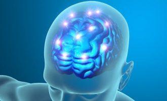 """Il legame tra split brain e """"coscienza divisa"""": un'evidenza smentita?"""