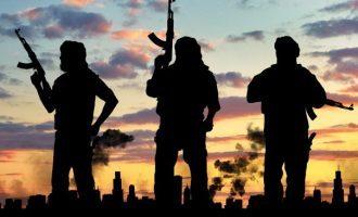 Un nuovo modello per prevedere attentati terroristici con un accuratezza del 90%