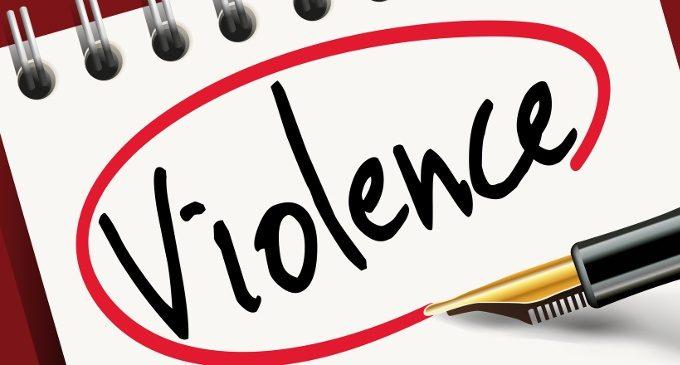 Critica all'articolo 'Indagine conoscitiva sulla violenza verso il maschile'