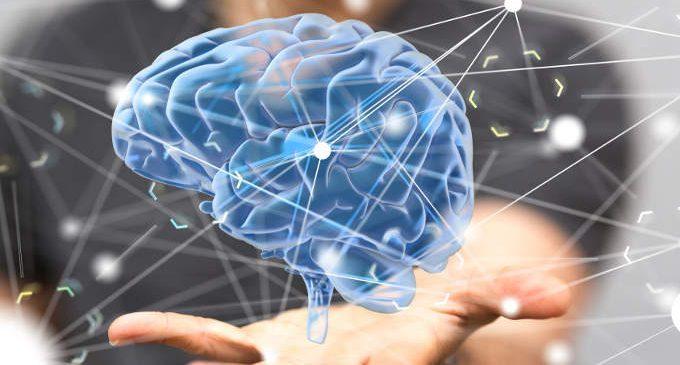 Ipotalamo e ipofisi: le funzioni – Introduzione alla psicologia