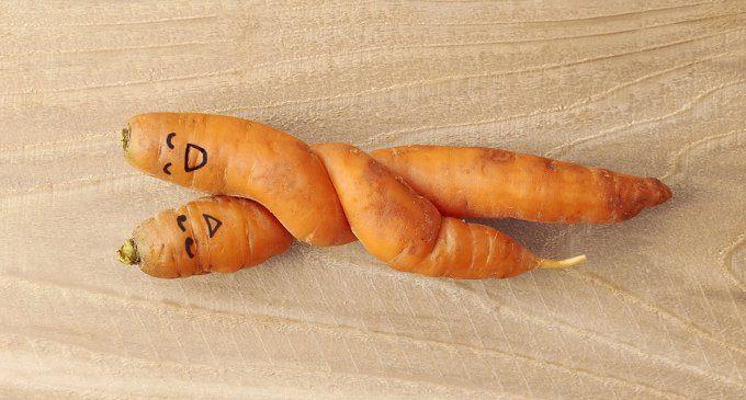 Vegan-sexuality ovvero ama come mangi: processi cognitivi e preferenze sessuali di chi sceglie un' alimentazione vegetariana