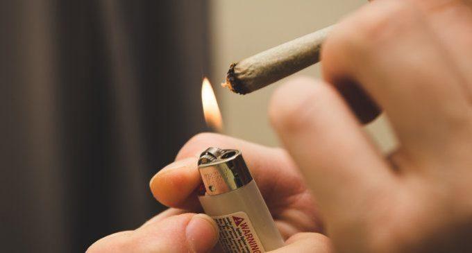 Cannabis: usi ed effetti della droga – Introduzione alla Psicologia