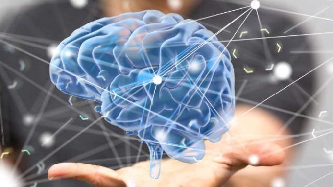 Un enzima metabolico capace di influenzare i ricordi