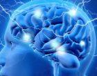 Neurodiversità: le variazioni neurali sono un ostacolo o una risorsa?