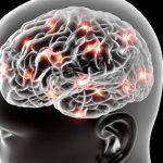 Elettroencefalografia: caratteristiche e modalità di funzionamento