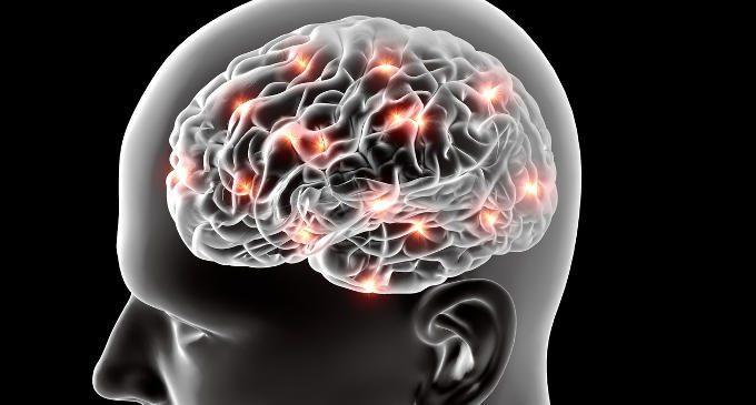Elettroencefalografia (EEG): caratteristiche e modalità di funzionamento – Introduzione alla Psicologia