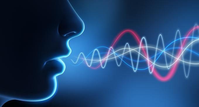 Recupero afasico e speech therapy: la correlazione con la plasticità strutturale della via ventrale