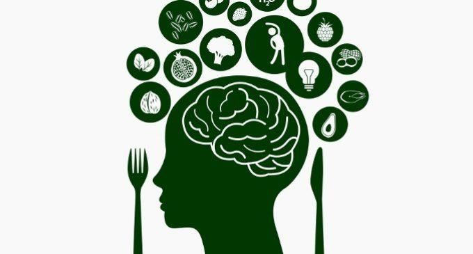 Il cervello comunica al nostro corpo come bruciare grassi dopo un pasto