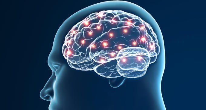 I potenziali evocati (ERP): in cosa consistono – Introduzione alla Psicologia