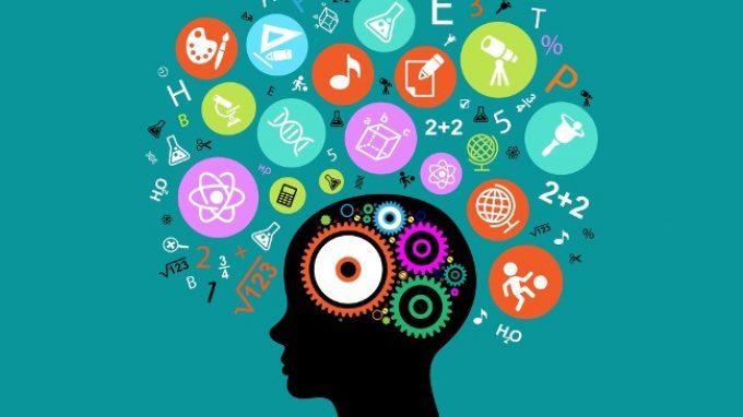 Onde cerebrali diverse per diversi tipi di apprendimento