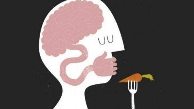 Neurobiologia dei Disturbi della Nutrizione e dell'Alimentazione: stato dell'arte e prospettive – Report dal convegno